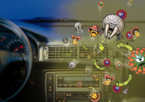 car-and-germs